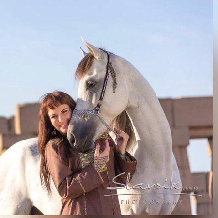 Ride Egypt: Horse riding in Cairo, Luxor and hurgahga.