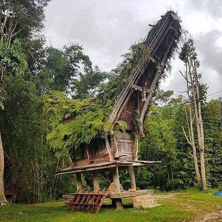 Sinaji Toraja Tour (Ino Toraja)