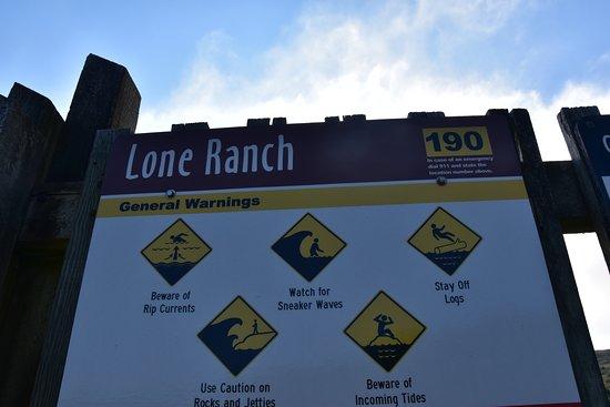 Brookings, Όρεγκον: Lone Ranch Beach