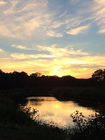 Jones Creek, เท็กซัส: Live Oak RV Park