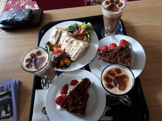 COOL FOR CATS CAFE, Newton Abbot - Restaurant Reviews, Photos & Phone Number - Tripadvisor