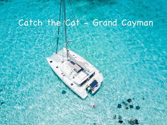 Cayman Yacht Charters: Catch the Cat Grand Cayman at Stingray City. Private charter