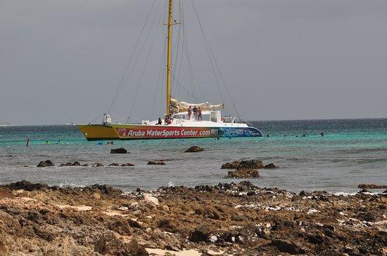 The Arusun - Aruba Catamaran Sail with Snorkeling: Catamaran from Boca Catalina beach.