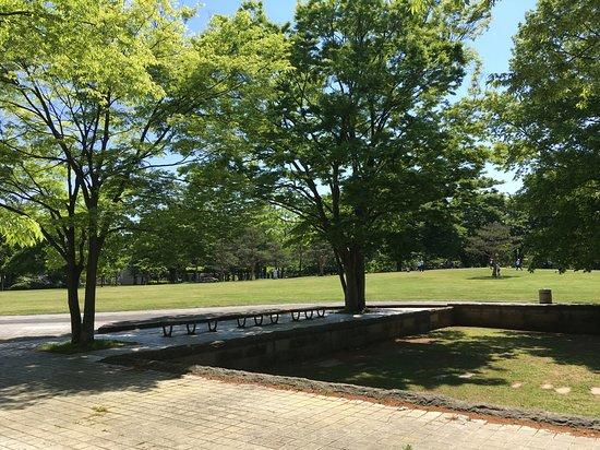 Wakasato park