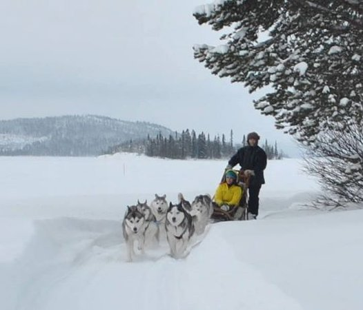 Lapland Sweden, Sweden: Skim across the frozen lake, pulled along by your team of beautiful Siberian huskies. A must do experience.