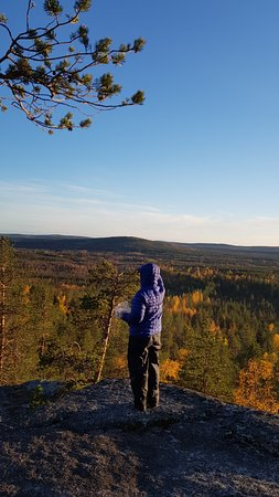 Lapland Sweden, Sweden: The Taiga is the largest forest zone in the world. Breathing in all that fresh air as you see mile after mile of forest stretching away to the horizon in every direction is a real treat.