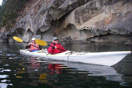 海湾群岛皮划艇和水上飞机冒险