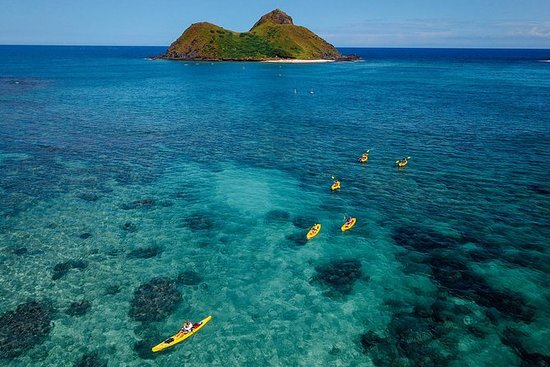 Kayaking Tour of Kailua Bay with Lunch