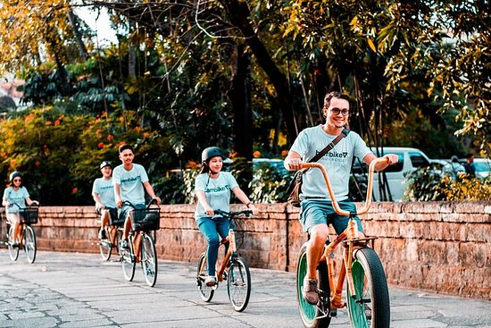 1.5-Hour Express Bike Tour in...