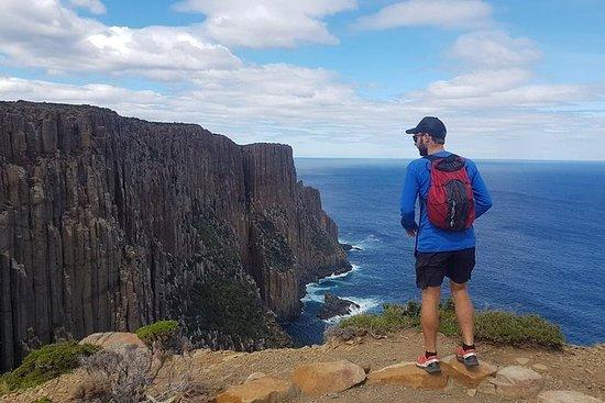 3日遊:霍巴特探險之旅:瑪麗亞島,拉烏爾角和Mount Field