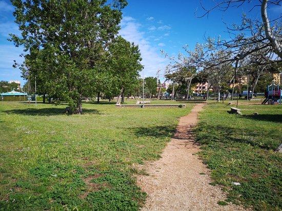 Parco XXV Novembre 1884