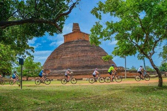 Anuradhapura sykkeltur: Guidet privat...