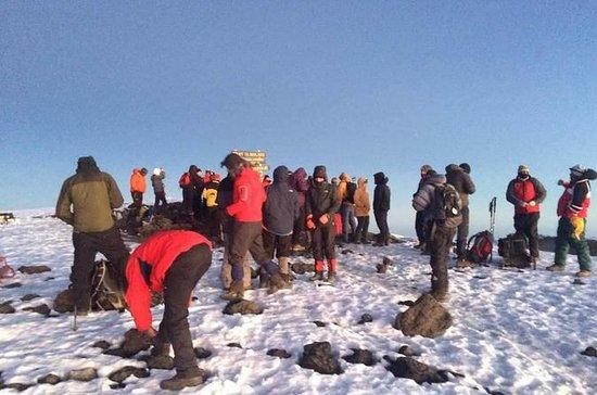 14 días subiendo el Kilimanjaro y la...