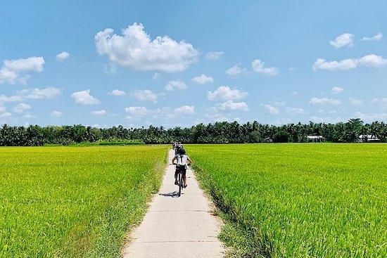 4天骑自行车旅行在湄公河三角洲的Beaten Tracks