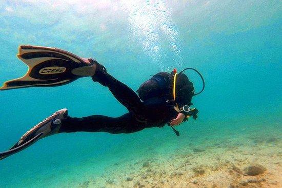 在雅典探索水肺潜水(密闭和开阔水域)