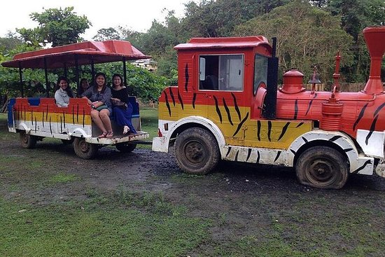 BOHOL ZOOCOLATE THRILLS ADMISSION ...