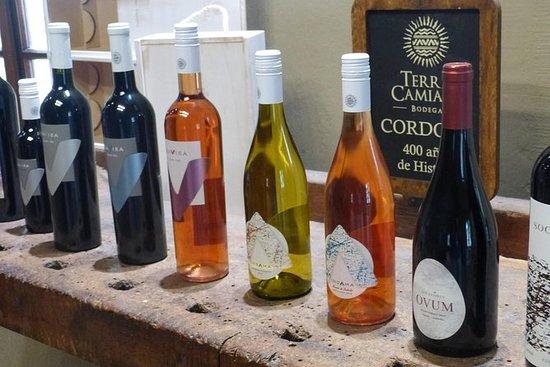 Privat vintur Colonia Caroya Córdoba...