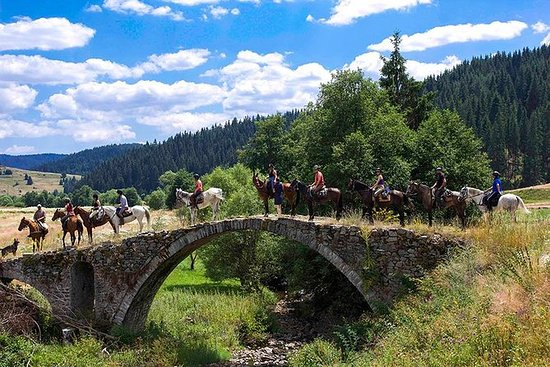 Horse Ride Trigrad