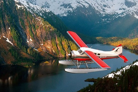 Misty Fjords Seaplane Tour con Island...