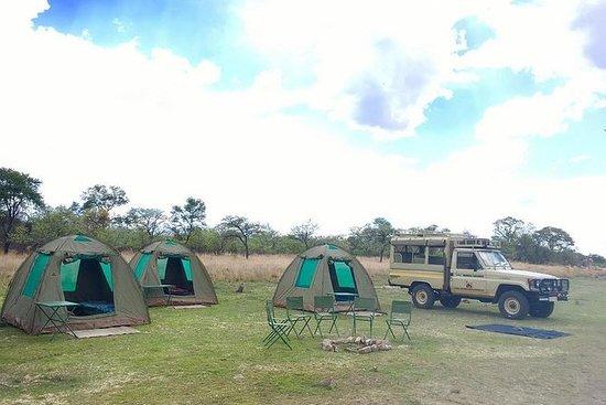 Safari in campeggio per 2 notti al