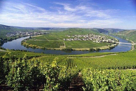 Grape Escape Mosel - Tour de vinhos...