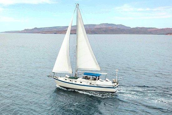 Paseos privados en velero a la isla...
