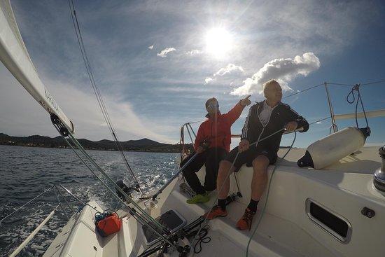 Marlin sailing