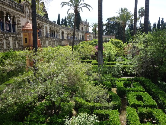 Real Alcazar de Sevilla: 裏手の大きな庭園