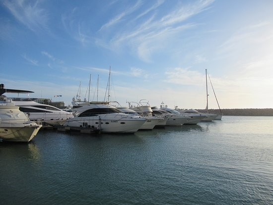 lots of ships and yachts