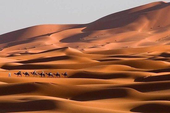 Sahara Deserts