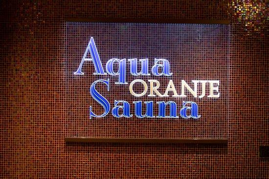 Hotel Van Oranje: Sauna y alberca