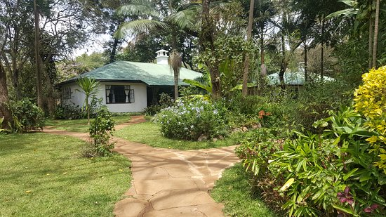 Tamambo Karen Blixen: Hotel bungalows