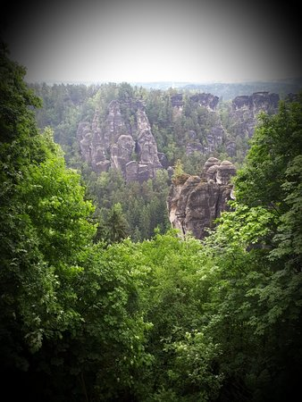 Saxe, Allemagne: Grawp, the giant half-brother of Rubeus Hagrid, lived in the Forbidden Forest. However his mother Fridwulfa  could have been born here.
