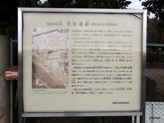 Tano Museum