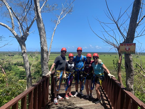Ecoquest Adventures & Tours: Vie from one of the  Ziplines