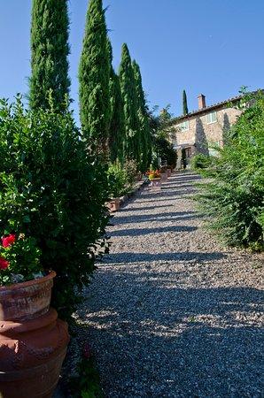 Il Colombaio Residence&Restaurant: Vialetto