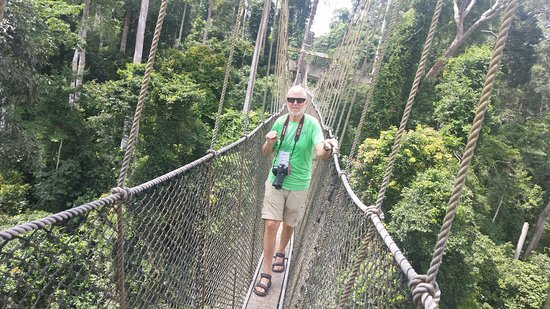Eyali Tours: Kakum National Park, take a walk on this canopy walkway suspended on 7 bridges and hike into the virgin forest at Kakum National Park to learn about the medicinal and spiritual value of trees.