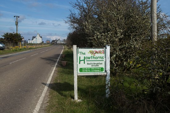 Landscape - Picture of The Hawthorns Bed & Breakfast, Mey - Tripadvisor