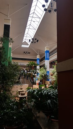 Galleria Shopping Mall: The plants are also nice to see