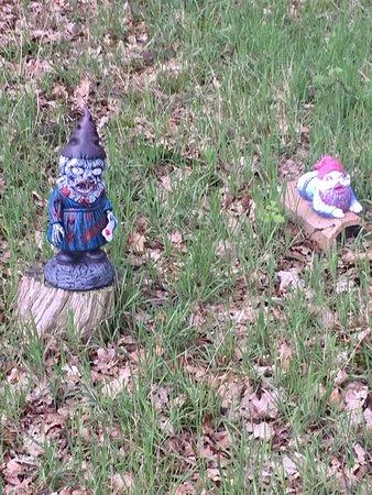 Gnome Magic Garden
