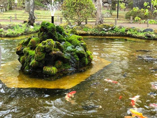 Kaiko Shrine: 懐古園の中にある神社⛩