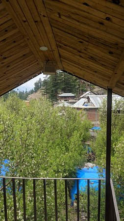 Stay at Apple orchard farming camp