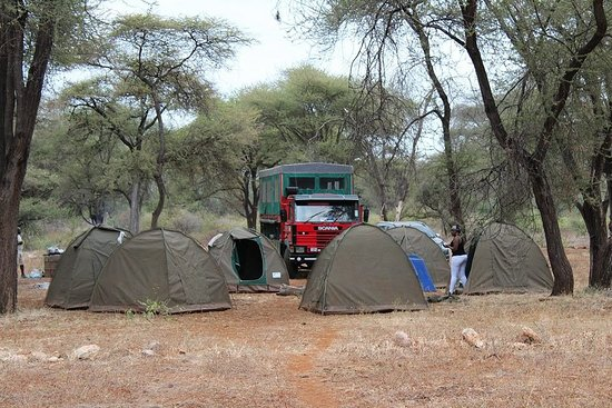More of camping adventures  Meru National Park this Madaraka Holidays (June 1st |2nd)  Cost Ksh 7,400 per person