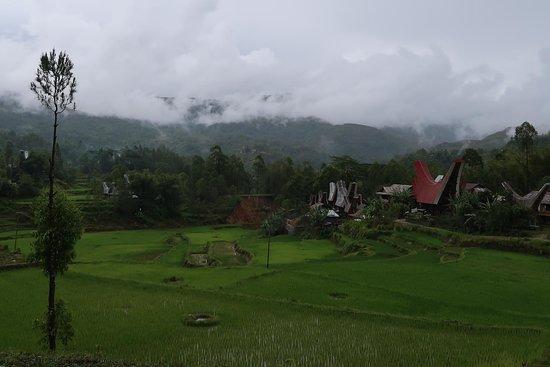 Jalan Jalan Toraja