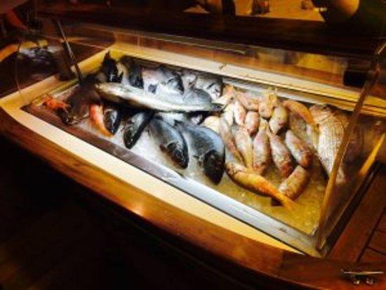 Voliotis: Ολόφρεσκα ψάρια