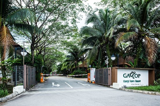 GALLOP KRANJI FARM RESORT: UPDATED 2021 Reviews, Price Comparison and 86  Photos (Singapore) - Tripadvisor