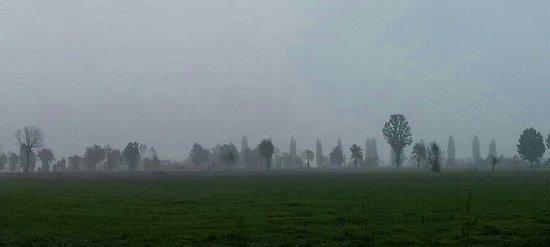 Province of Cremona, Włochy: paesaggio padano