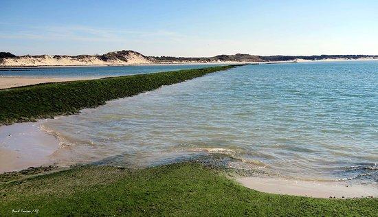 La Baie d'Authie, petite sœur de la Baie de Somme