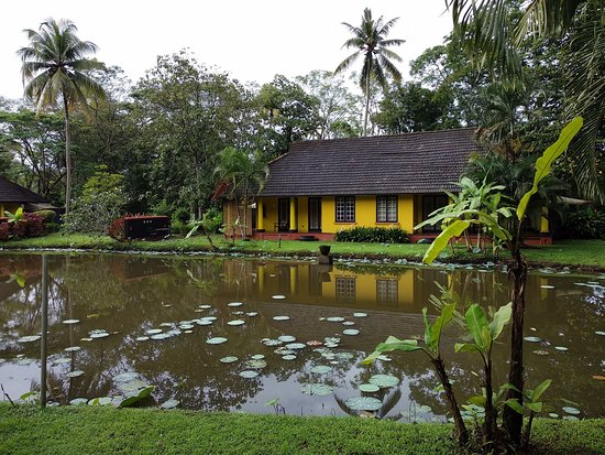 Peaceful oasis