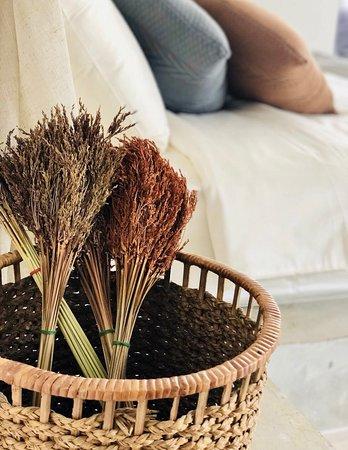 Small  garden room - 曼谷Yolo Bangkok Boutique Hotel的圖片 - Tripadvisor